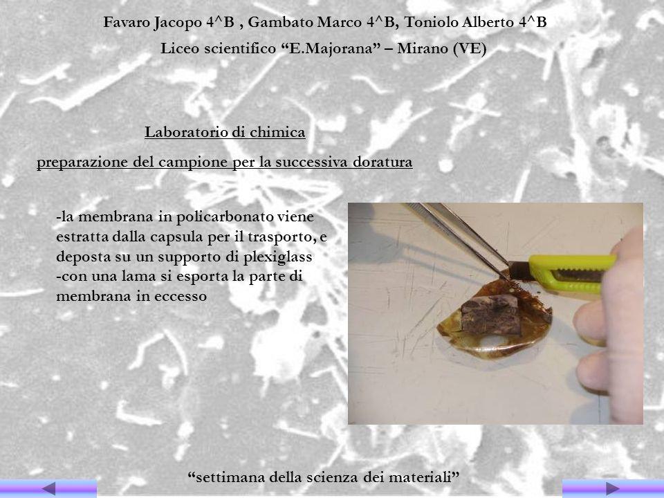 Favaro Jacopo 4^B, Gambato Marco 4^B, Toniolo Alberto 4^B Liceo scientifico E.Majorana – Mirano (VE) settimana della scienza dei materiali Laboratorio