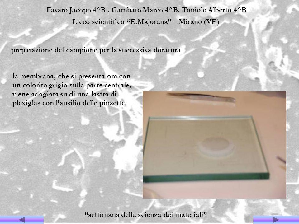 Favaro Jacopo 4^B, Gambato Marco 4^B, Toniolo Alberto 4^B Liceo scientifico E.Majorana – Mirano (VE) settimana della scienza dei materiali la membrana