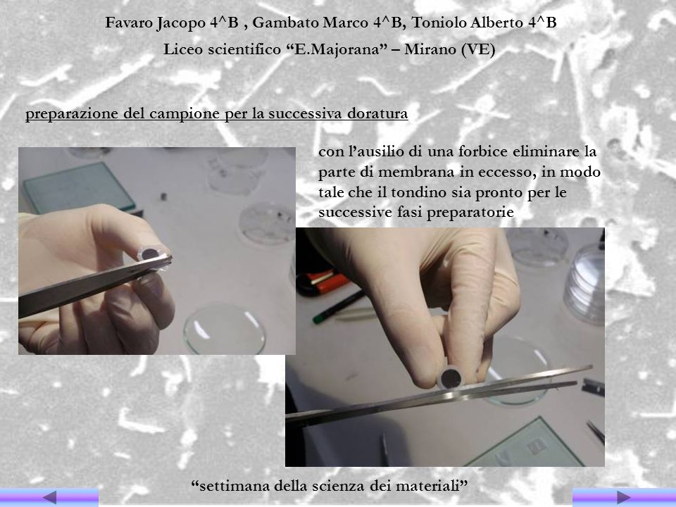 Favaro Jacopo 4^B, Gambato Marco 4^B, Toniolo Alberto 4^B Liceo scientifico E.Majorana – Mirano (VE) settimana della scienza dei materiali preparazion