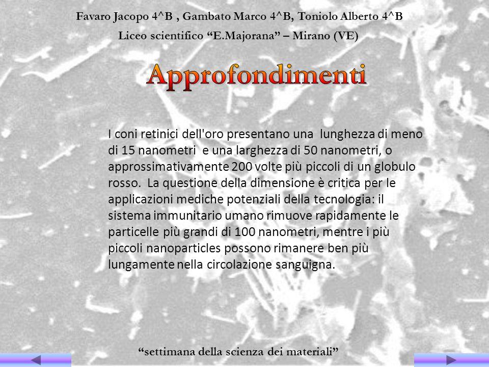Favaro Jacopo 4^B, Gambato Marco 4^B, Toniolo Alberto 4^B Liceo scientifico E.Majorana – Mirano (VE) settimana della scienza dei materiali I coni reti