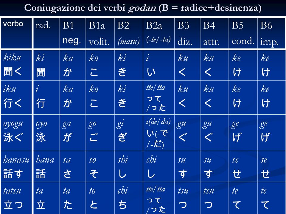 Coniugazione dei verbi godan (B = radice+desinenza) verbo rad. B1 neg. B1a volit. B2 ( masu ) B2a (-te/-ta) B3 diz. B4 attr. B5 cond. B6 imp. kiku ki