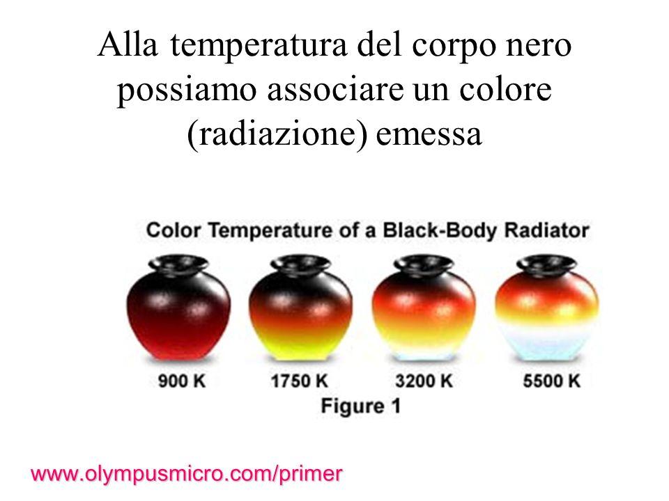 Alla temperatura del corpo nero possiamo associare un colore (radiazione) emessa www.olympusmicro.com/primer