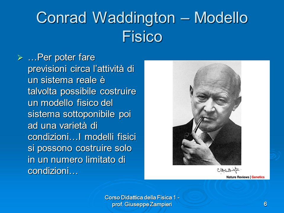 Corso Didattica della Fisica 1 - prof. Giuseppe Zampieri6 Conrad Waddington – Modello Fisico …Per poter fare previsioni circa lattività di un sistema