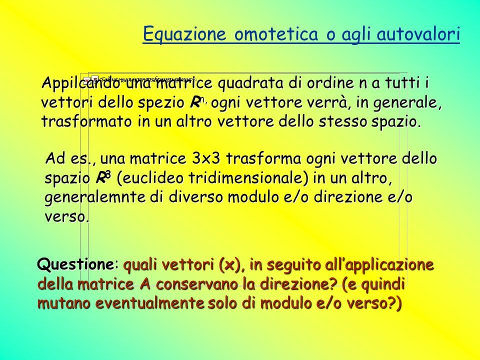 Equazione omotetica o agli autovalori Appilcando una matrice quadrata di ordine n a tutti i vettori dello spezio R n, ogni vettore verrà, in generale,