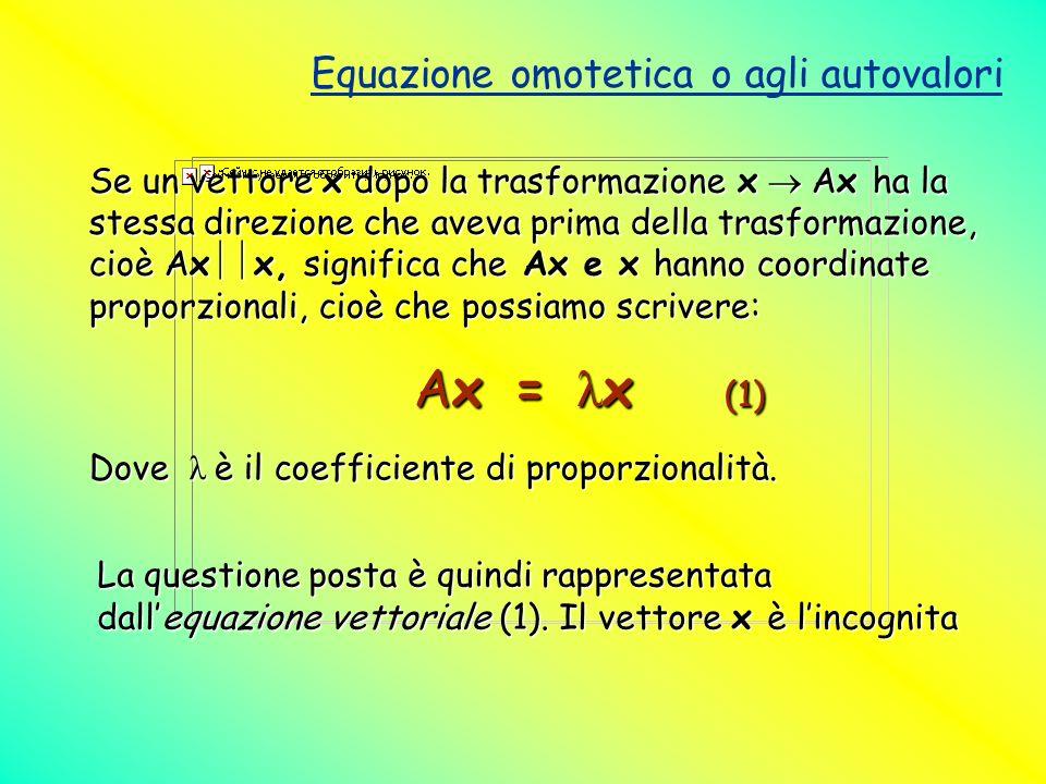 Equazione omotetica o agli autovalori Se un vettore x dopo la trasformazione x Ax ha la stessa direzione che aveva prima della trasformazione, cioè Ax