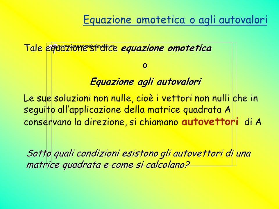 Equazione omotetica o agli autovalori Tale equazione si dice equazione omotetica o Equazione agli autovalori Le sue soluzioni non nulle, cioè i vettor