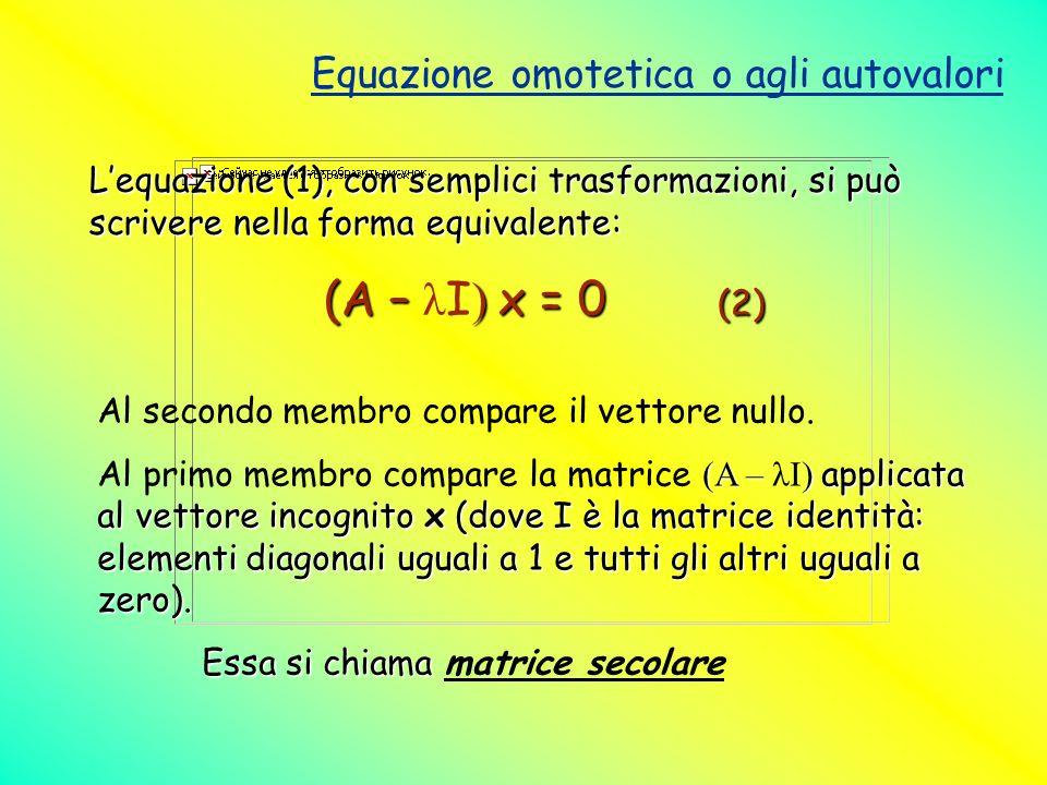 Equazione omotetica o agli autovalori Lequazione (1), con semplici trasformazioni, si può scrivere nella forma equivalente: (A – ) x = 0 (2) (A – λ I