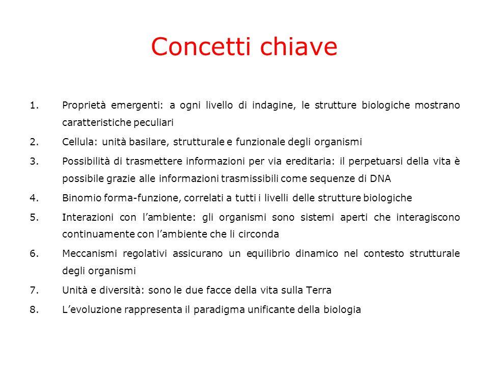 TRANSITO POLMONARE Galeno affermava… -permeabilità del setto interventricolare -sangue ai polmoni per nutrire Osservazioni: legature di arterie/vene con flusso dacqua Conclusioni: 1.