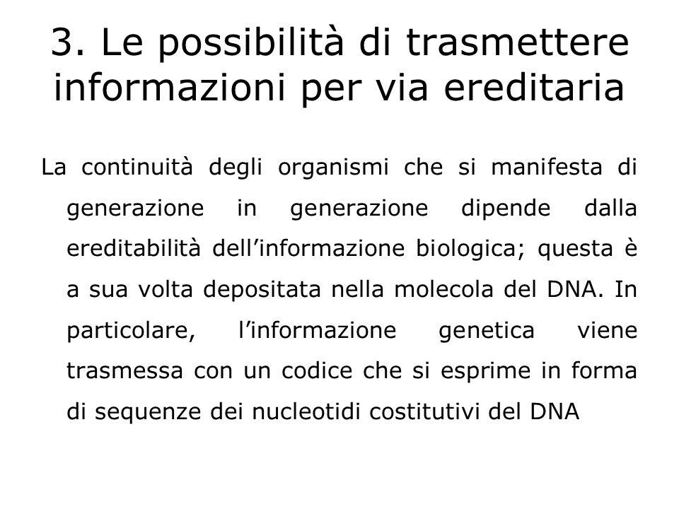 Riferimenti bibliografici Asimov Isaac – Breve Storia della Biologia –Zanichelli - 2003 Campbell Neil A., Reece Jane B.