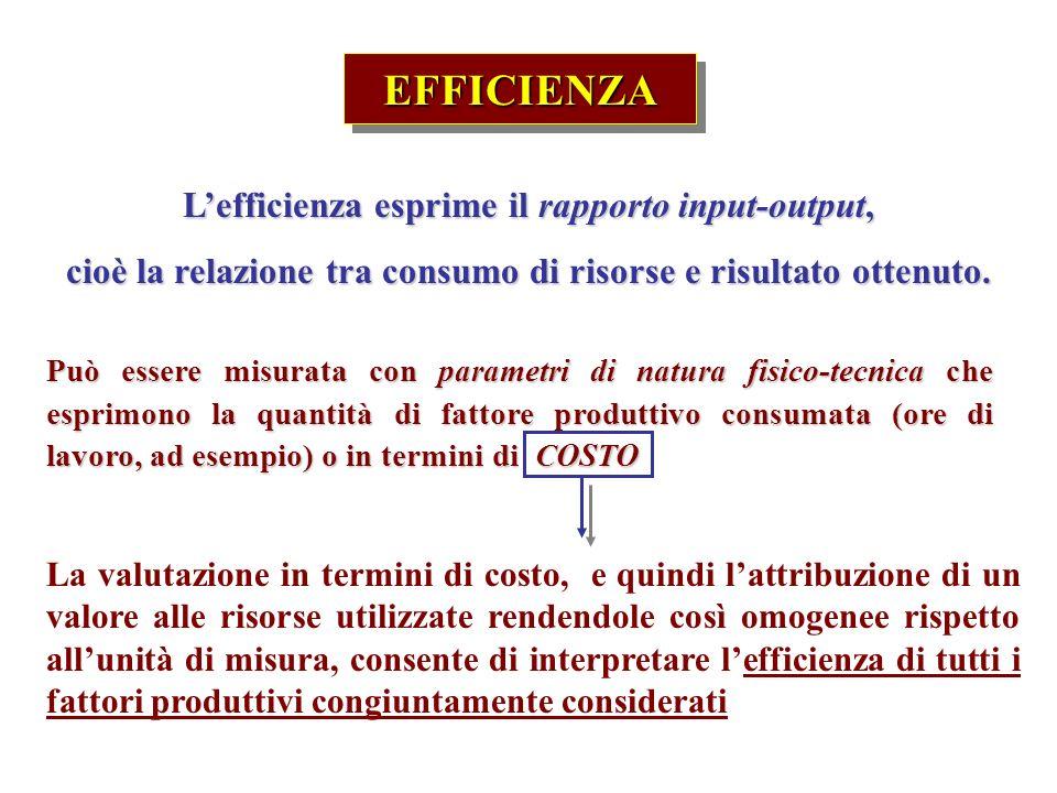 EFFICIENZAEFFICIENZA Lefficienza esprime il rapporto input-output, cioè la relazione tra consumo di risorse e risultato ottenuto.