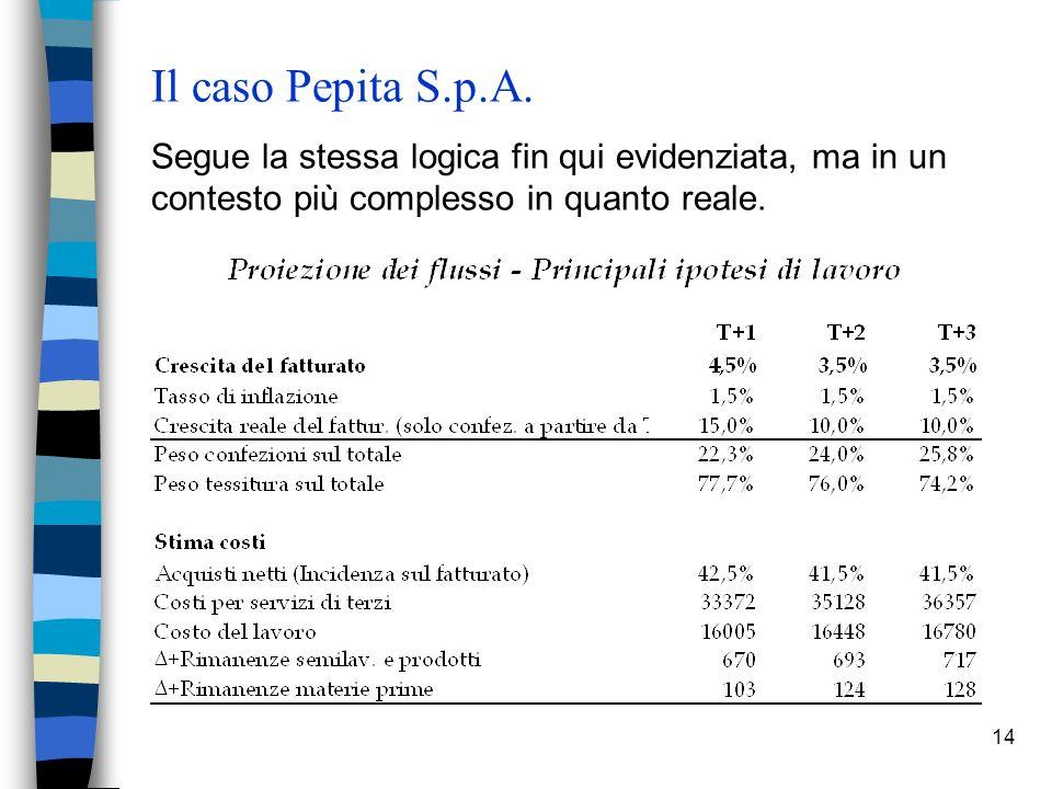 14 Il caso Pepita S.p.A.