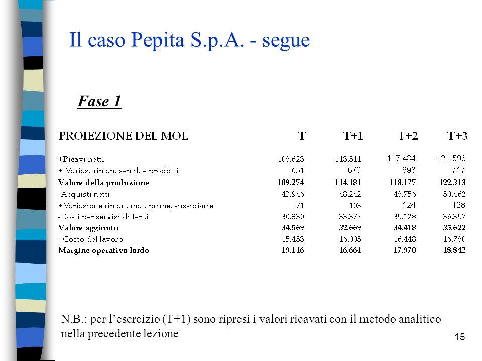 15 Il caso Pepita S.p.A.