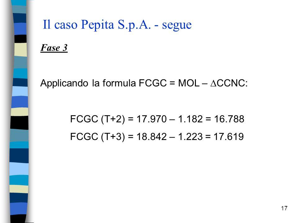 17 Il caso Pepita S.p.A.