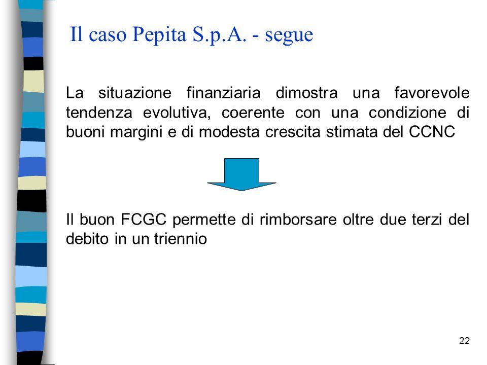 22 Il caso Pepita S.p.A.