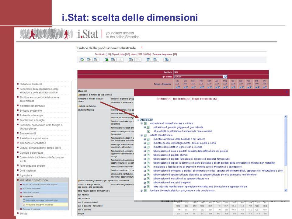 i.Stat: scelta delle dimensioni Istat, 18 febbraio 2010