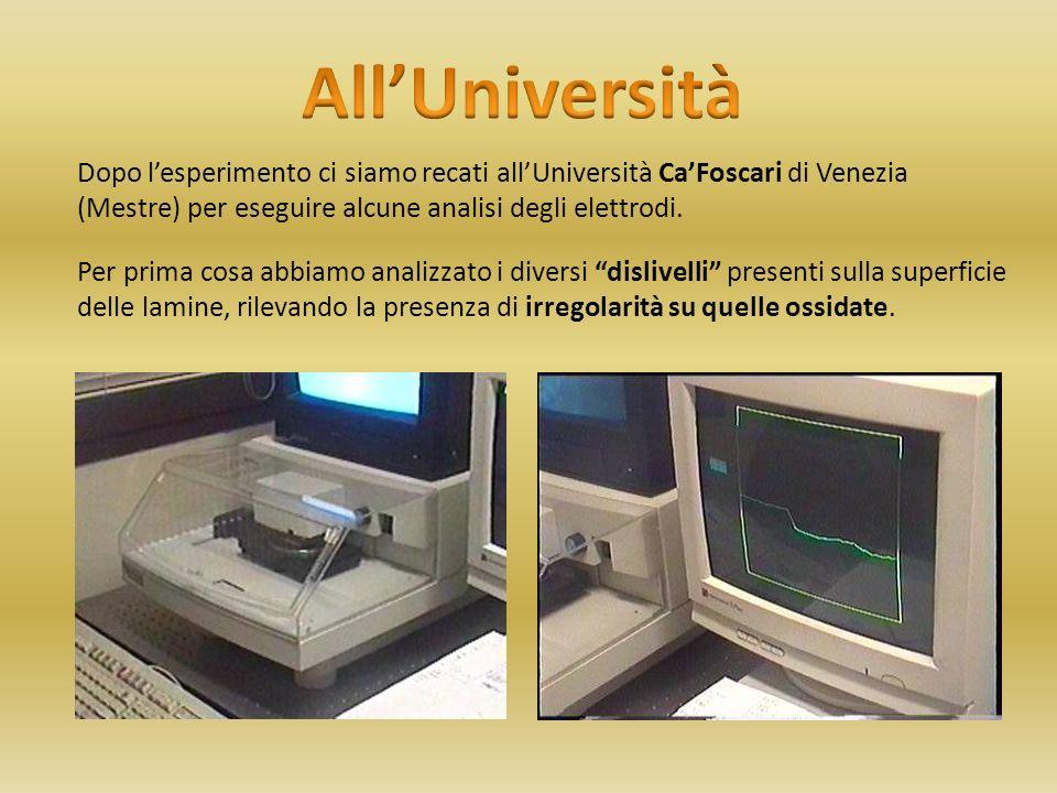 Dopo lesperimento ci siamo recati allUniversità CaFoscari di Venezia (Mestre) per eseguire alcune analisi degli elettrodi. Per prima cosa abbiamo anal