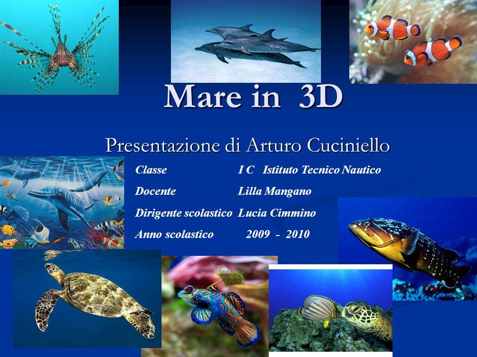 Mare in 3D Presentazione di Arturo Cuciniello Classe I C Istituto Tecnico Nautico Docente Lilla Mangano Dirigente scolastico Lucia Cimmino Anno scolas