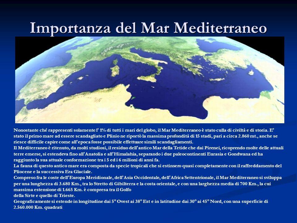 Importanza del Mar Mediterraneo Nonostante ché rappresenti solamente l' 1% di tutti i mari del globo, il Mar Mediterraneo è stato culla di civiltà e d