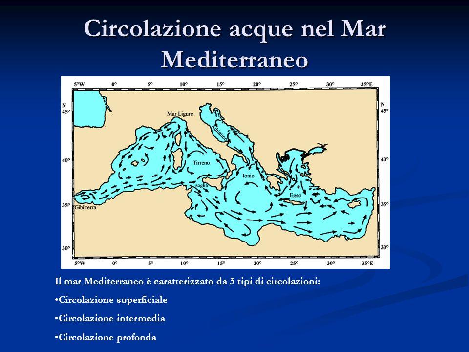 Circolazione acque nel Mar Mediterraneo Il mar Mediterraneo è caratterizzato da 3 tipi di circolazioni: Circolazione superficiale Circolazione interme