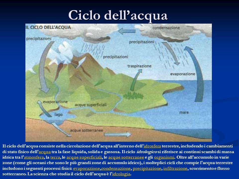 Ciclo dellacqua Il ciclo dell'acqua consiste nella circolazione dell'acqua all'interno dell'idrosfera terrestre, includendo i cambiamenti di stato fis