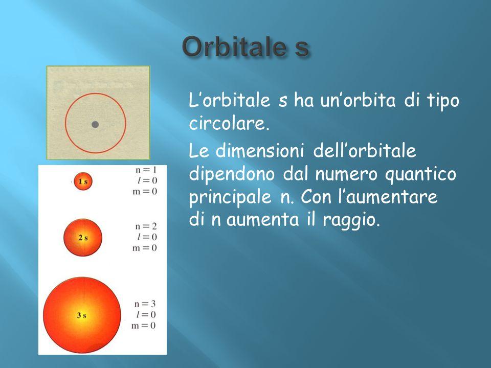 Lorbitale s ha unorbita di tipo circolare. Le dimensioni dellorbitale dipendono dal numero quantico principale n. Con laumentare di n aumenta il raggi