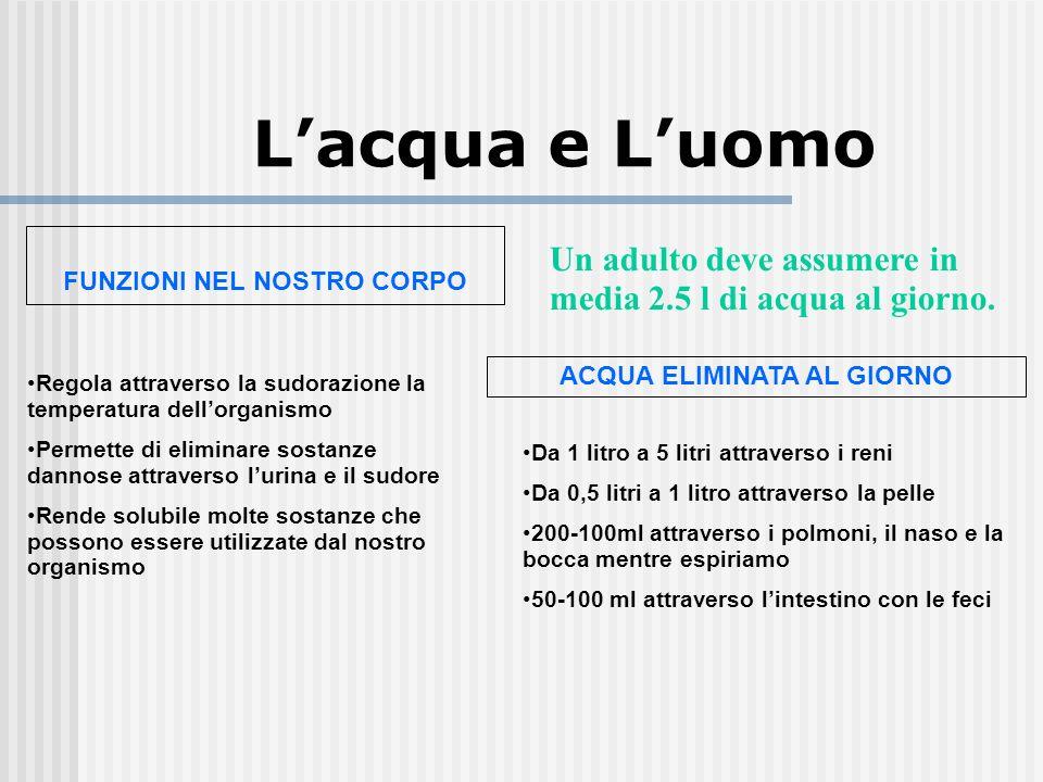 Lacqua e Luomo FUNZIONI NEL NOSTRO CORPO Un adulto deve assumere in media 2.5 l di acqua al giorno. ACQUA ELIMINATA AL GIORNO Da 1 litro a 5 litri att