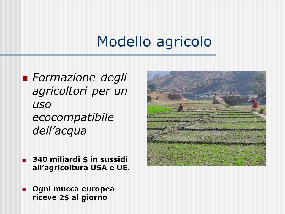 Modello agricolo Formazione degli agricoltori per un uso ecocompatibile dellacqua 340 miliardi $ in sussidi allagricoltura USA e UE. Ogni mucca europe
