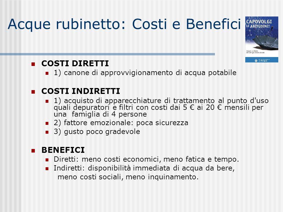 Acque rubinetto: Costi e Benefici COSTI DIRETTI 1) canone di approvvigionamento di acqua potabile COSTI INDIRETTI 1) acquisto di apparecchiature di tr