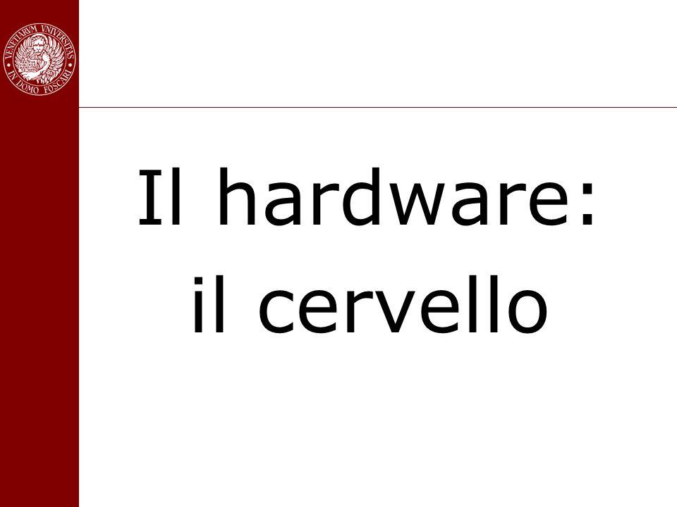 Il hardware: il cervello