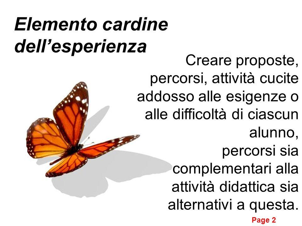 Page 2 Elemento cardine dellesperienza Creare proposte, percorsi, attività cucite addosso alle esigenze o alle difficoltà di ciascun alunno, percorsi sia complementari alla attività didattica sia alternativi a questa.