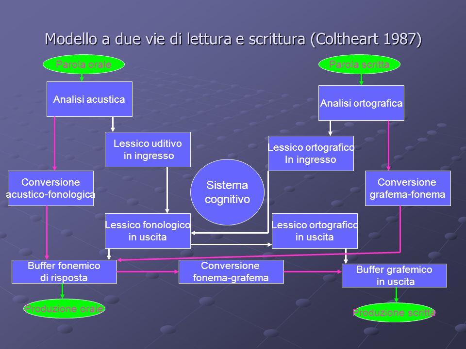 Modello a due vie di lettura e scrittura (Coltheart 1987) Sistema cognitivo Analisi acustica Analisi ortografica Lessico uditivo in ingresso Lessico o
