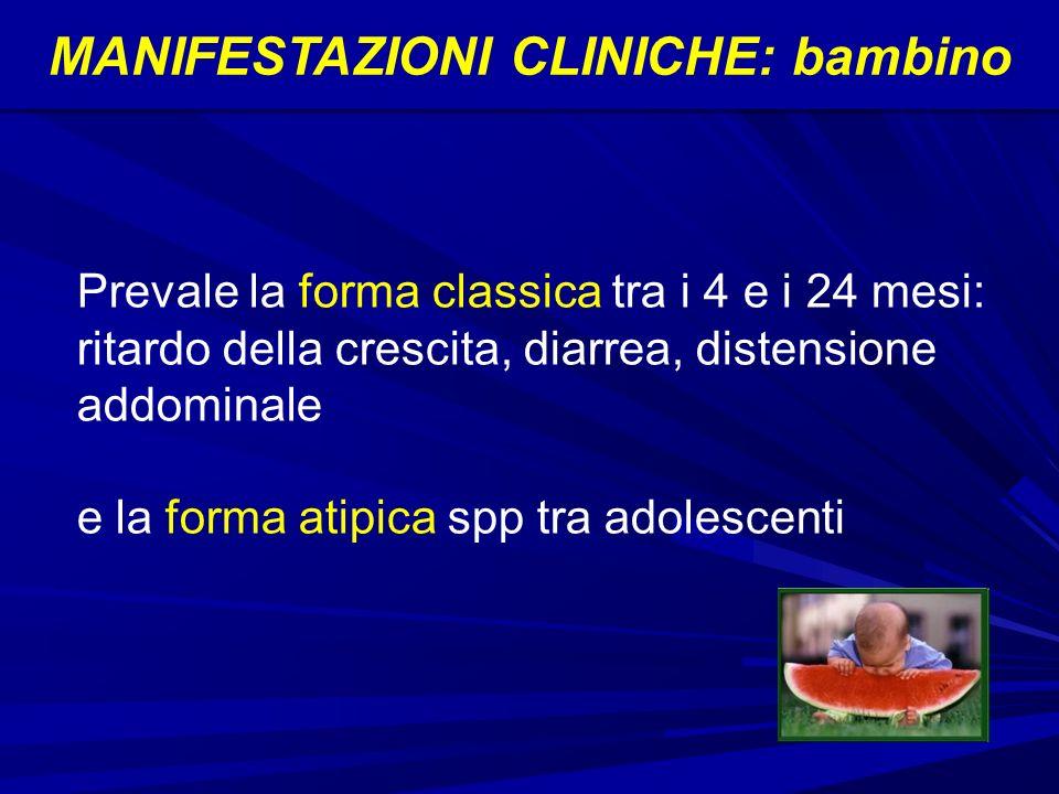 MANIFESTAZIONI CLINICHE: bambino Prevale la forma classica tra i 4 e i 24 mesi: ritardo della crescita, diarrea, distensione addominale e la forma atipica spp tra adolescenti