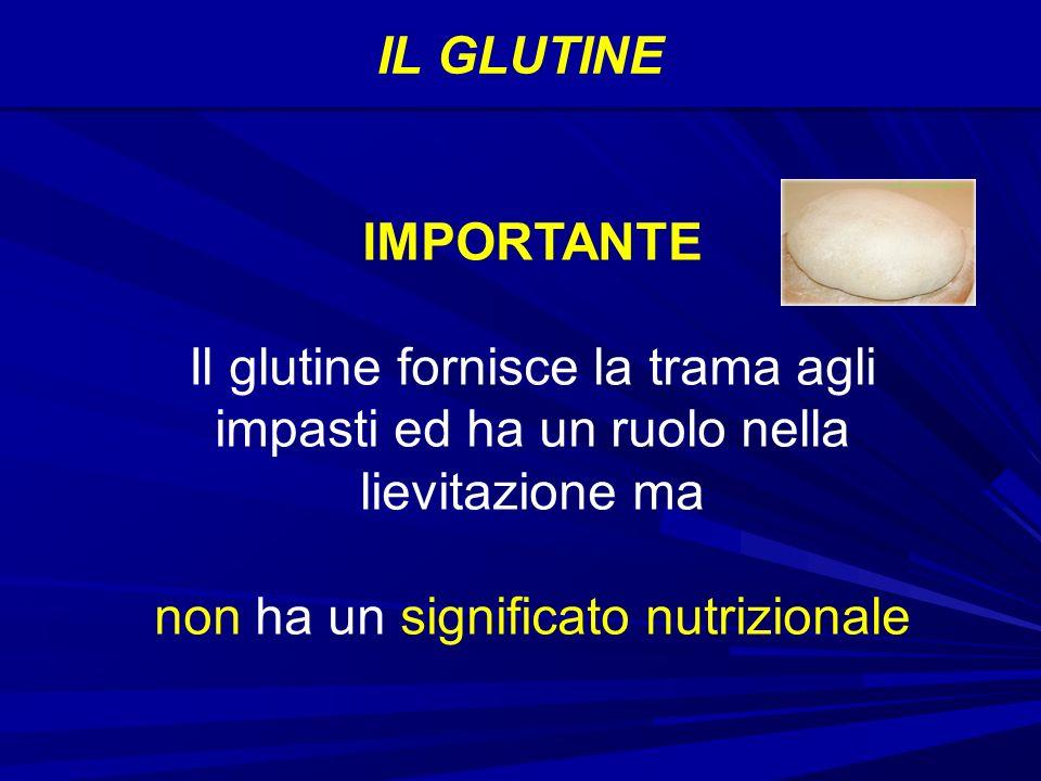 IL GLUTINE IMPORTANTE Il glutine fornisce la trama agli impasti ed ha un ruolo nella lievitazione ma non ha un significato nutrizionale