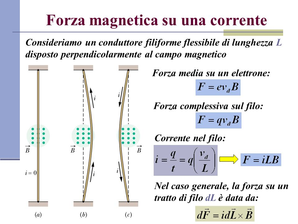 Forza magnetica su una corrente Consideriamo un conduttore filiforme flessibile di lunghezza L disposto perpendicolarmente al campo magnetico Forza me