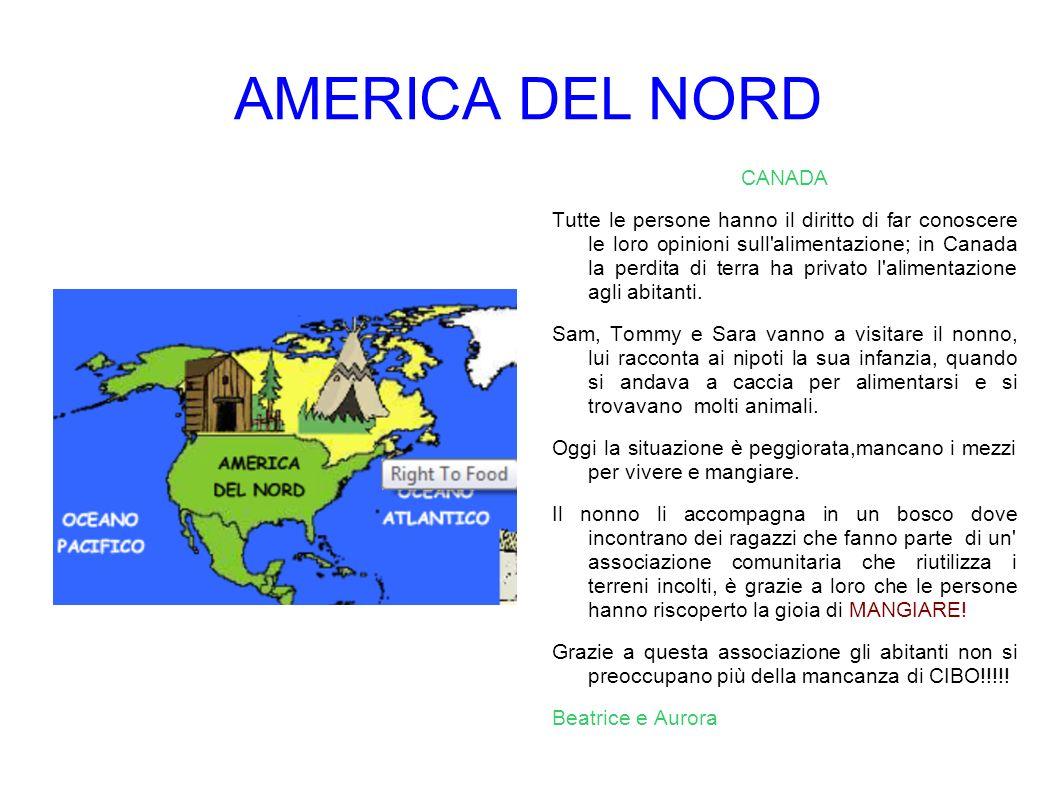 AMERICA DEL SUD BRASILE Il Brasile è il paese più grande e popoloso dell America meridionale.