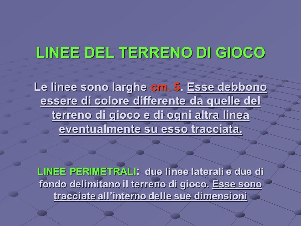 LINEE DEL TERRENO DI GIOCO Le linee sono larghe cm.