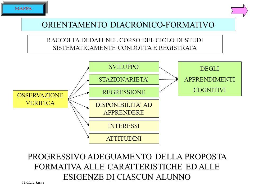 VALUTAZIONE DEL PROGETTO PRODOTTI INTERMEDI PRODOTTO FINALE PROCESSI DI LAVORO COMPORTAMENTI I.T.C. L. L. Radice