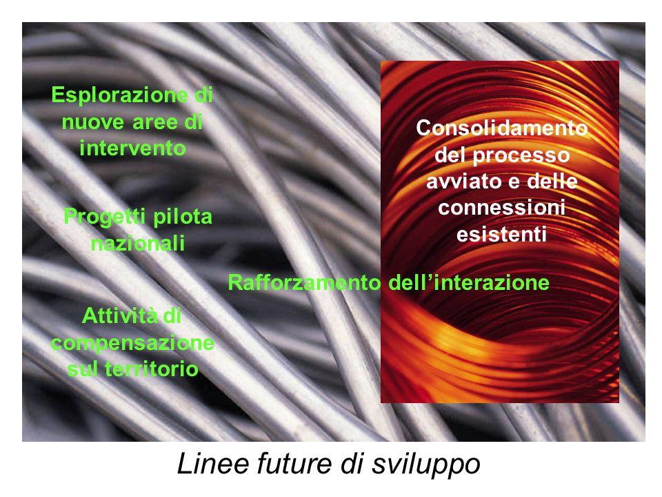 Linee future di sviluppo Consolidamento del processo avviato e delle connessioni esistenti Esplorazione di nuove aree di intervento Progetti pilota nazionali Attività di compensazione sul territorio Rafforzamento dellinterazione