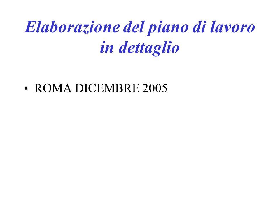 Elaborazione del piano di lavoro in dettaglio ROMA DICEMBRE 2005