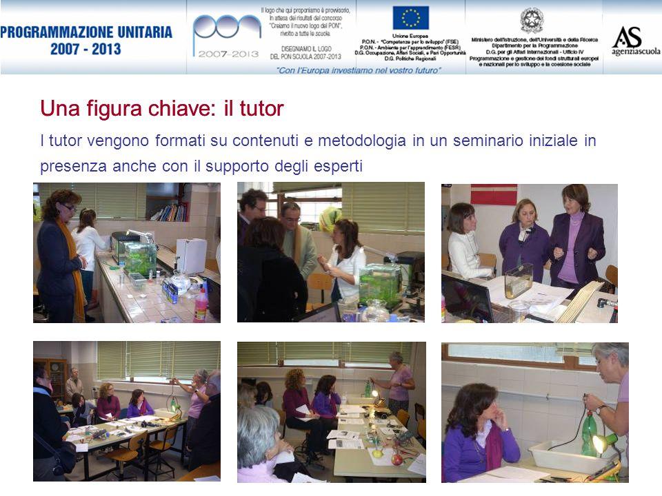 I tutor vengono formati su contenuti e metodologia in un seminario iniziale in presenza anche con il supporto degli esperti Una figura chiave: il tuto