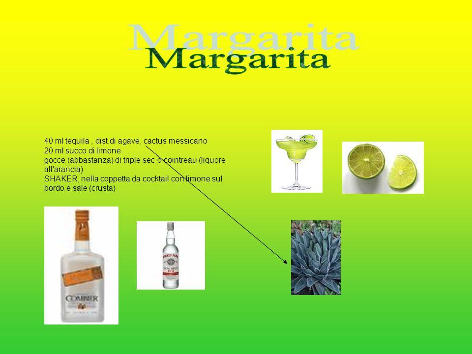 40 ml tequila, dist.di agave, cactus messicano 20 ml succo di limone gocce (abbastanza) di triple sec o cointreau (liquore all'arancia) SHAKER, nella
