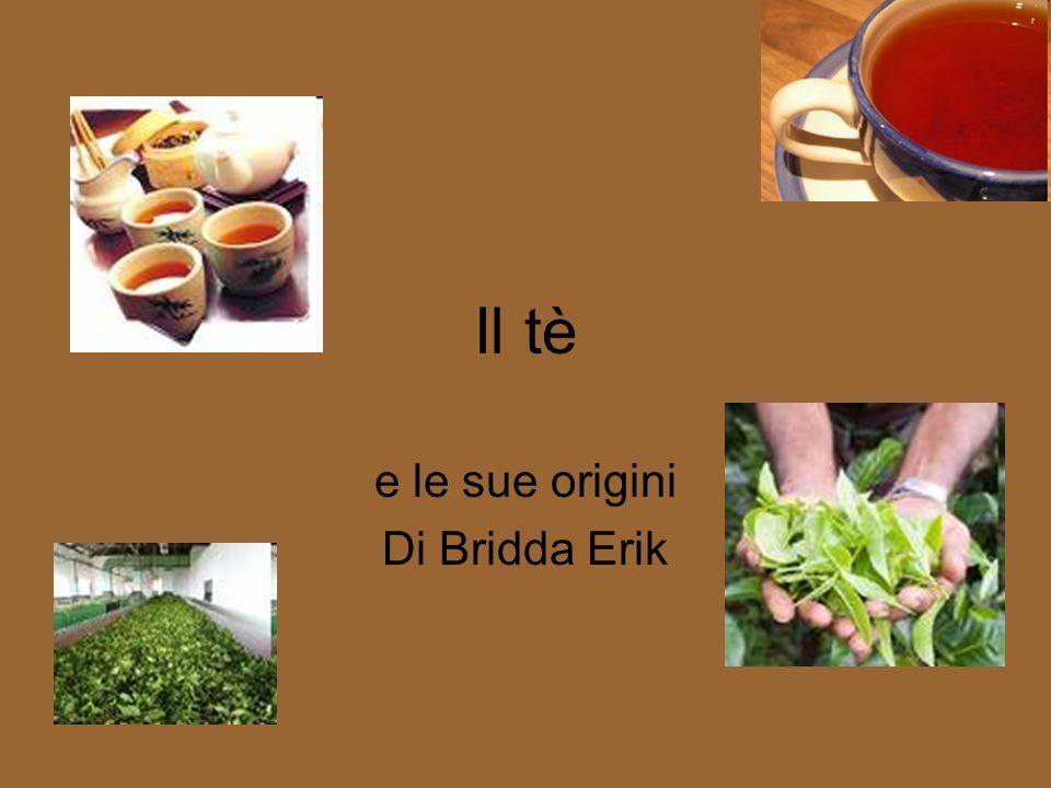 Il tè e le sue origini Di Bridda Erik