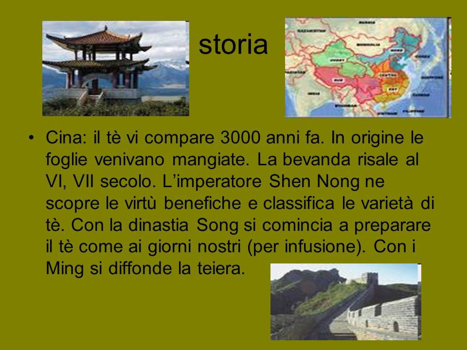 storia Cina: il tè vi compare 3000 anni fa. In origine le foglie venivano mangiate. La bevanda risale al VI, VII secolo. Limperatore Shen Nong ne scop