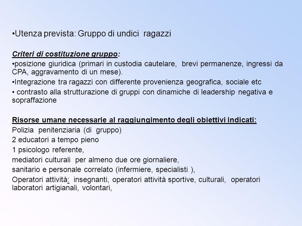 Utenza prevista: Gruppo di undici ragazzi Criteri di costituzione gruppo: posizione giuridica (primari in custodia cautelare, brevi permanenze, ingres