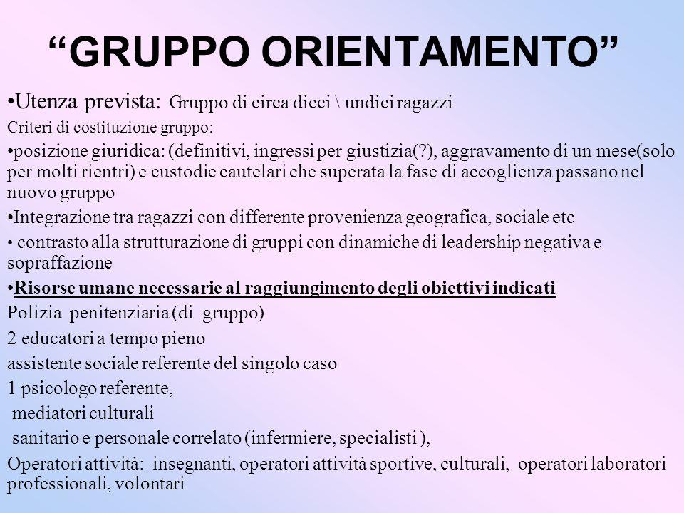 GRUPPO ORIENTAMENTO Utenza prevista: Gruppo di circa dieci \ undici ragazzi Criteri di costituzione gruppo: posizione giuridica: (definitivi, ingressi