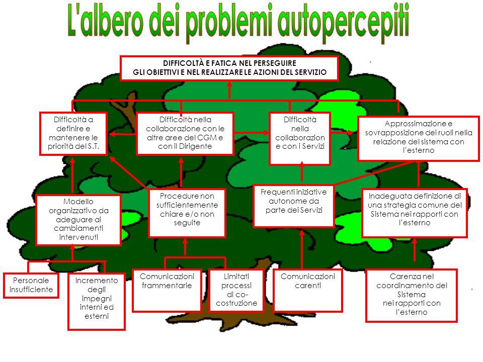 DIFFICOLTA NELLA COLLABORAZIONE CON IL S.T.