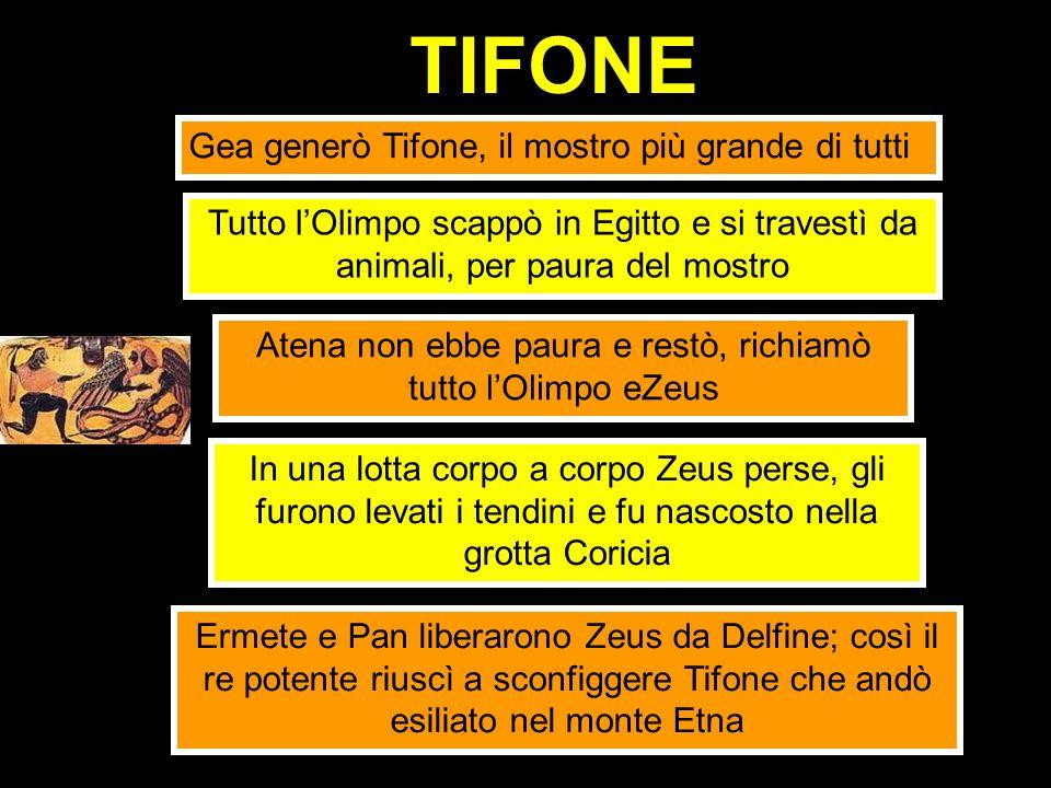 TIFONE Gea generò Tifone, il mostro più grande di tutti Tutto lOlimpo scappò in Egitto e si travestì da animali, per paura del mostro Atena non ebbe p