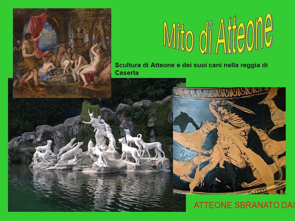ATTEONE SBRANATO DAI CANI Scultura di Atteone e dei suoi cani nella reggia di Caserta