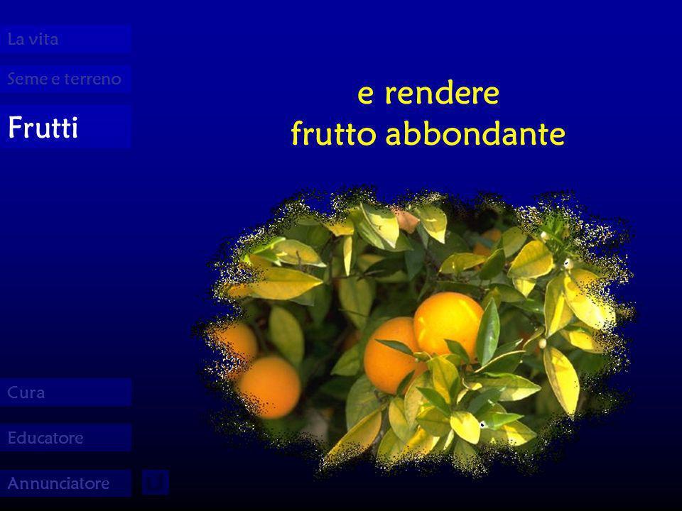 Seme e terreno La vita Frutti Cura Educatore Annunciatore e rendere frutto abbondante