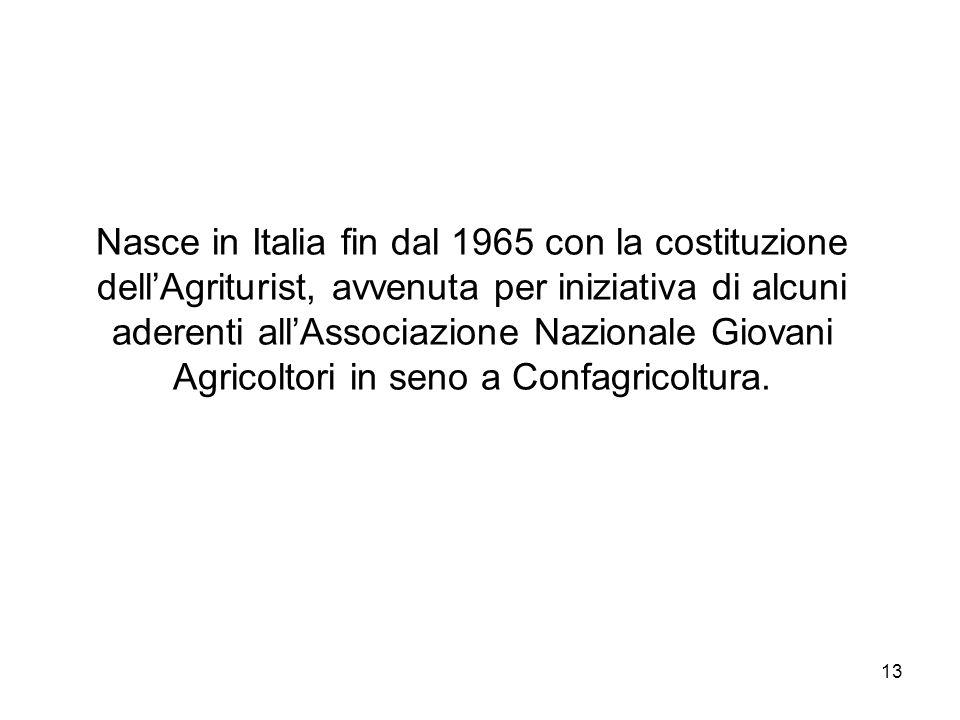 13 Nasce in Italia fin dal 1965 con la costituzione dellAgriturist, avvenuta per iniziativa di alcuni aderenti allAssociazione Nazionale Giovani Agric